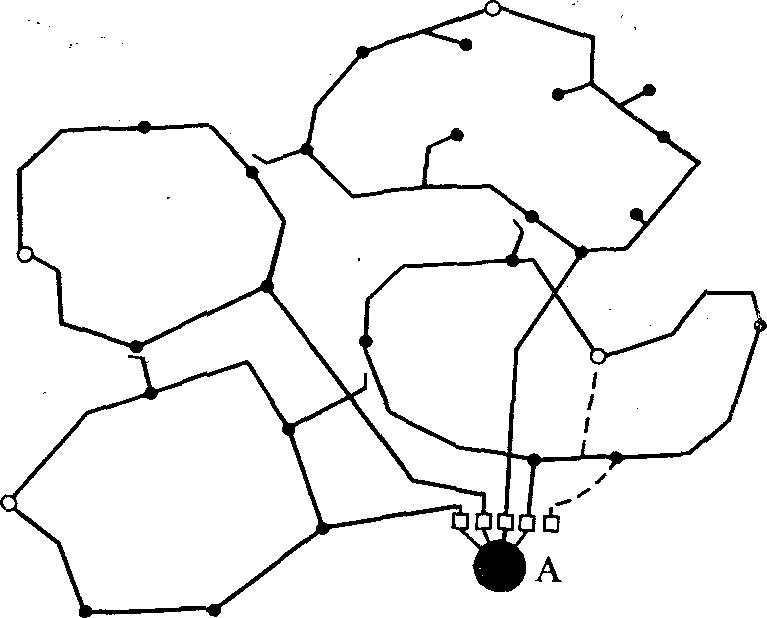 Схема разомкнутой петлевой